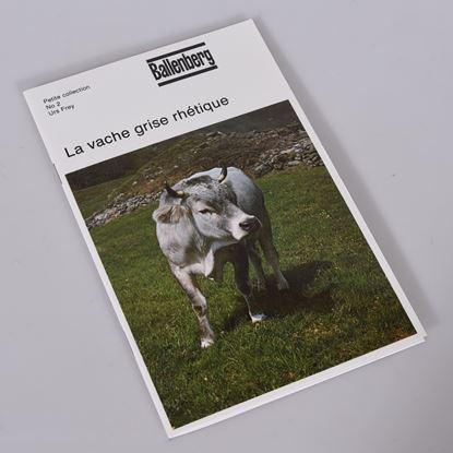 Bild von La vache grise rhétique