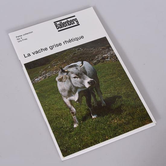 Picture of La vache grise rhétique